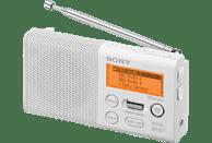 SONY XDR-P1DBPW, Digitalradio