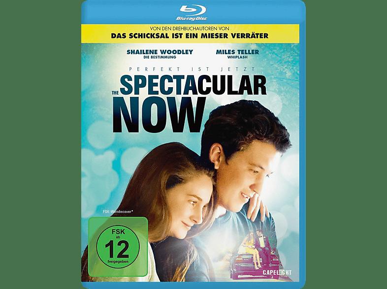 The Spectacular Now - Im Hier und Jetzt [Blu-ray]