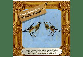 David Rotheray - The Life Of Birds  - (CD)