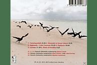 VARIOUS - Orchesterwerke [CD]