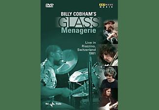 Billy Cobham, VARIOUS - Glass Menagerie  - (DVD)