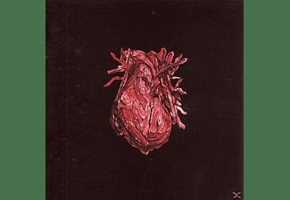 Bike For Three! - More heart than brains  - (CD)