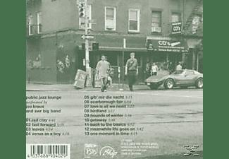 Joo Kraus - Public Jazz Lounge  - (CD)