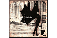 Tribulation - The Children Of The Night (2lp) [Vinyl]