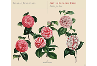 Konrad Junghänel - Suiten Für Laute [CD]