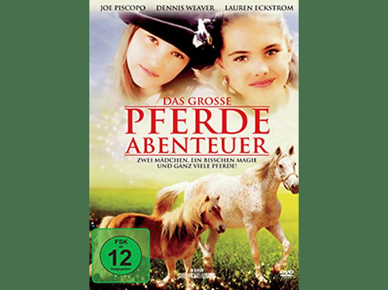 Das große Pferdeabenteuer [DVD]