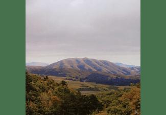Dirty Projectors & Björk - Mount Wittenburg Orca   - (CD)
