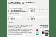 Ensemble Aurora, Gatti Enrico - Bach: Musikalisches Opfer [CD]