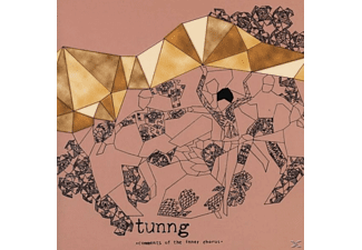 Tunng - Comments Of The Inner Chorus (Ltd.)  - (LP + Download)