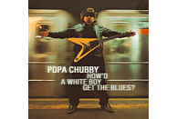 Popa Chubby - How'd A White Boy Get The Blue [CD]
