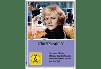Schwarze Panther DVD