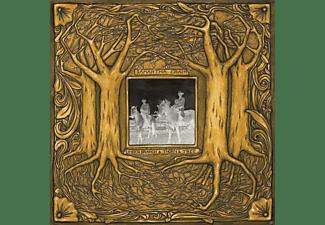 Samantha Crain - Under Branch & Thorn & Tree (180 Gr.Gatefold Lp)  - (Vinyl)
