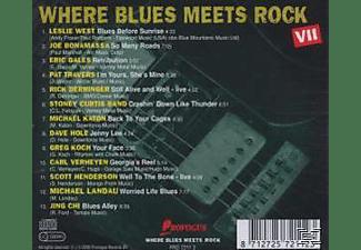 VARIOUS - Where Blues Meets Rock Vol.7  - (CD)
