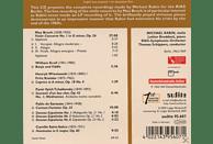 Michael Rabin, Rabin,M./Broddack,L./Riasso/Schippers,T. - Bruch:Violinkonzert 1 [CD]