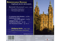 Wolfgang Horlin, Hörlin Wolfgang - Orgelwerke [CD]