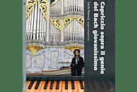 Cecile Mansuy - Bach: Orgelwerke [CD]