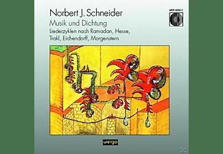 Die/schindler/blum/baianu/+ Singphoniker - Musik Und Dichtung-Liederzyklen Nach Ramadan,Hesse  - (CD)
