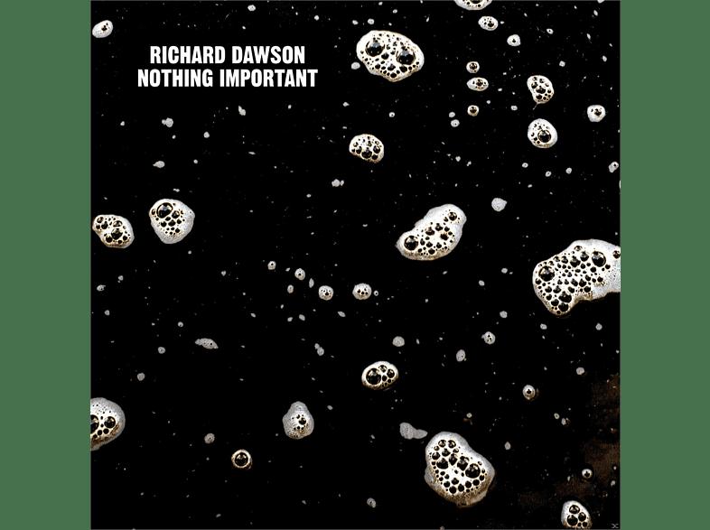 Richard Dawson - Nothing Important [Vinyl]
