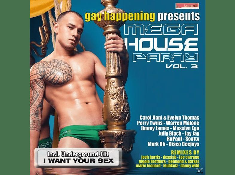 VARIOUS - Gay Happening Pres.Mega House Party 3 [CD]