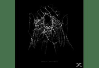 pixelboxx-mss-68415751