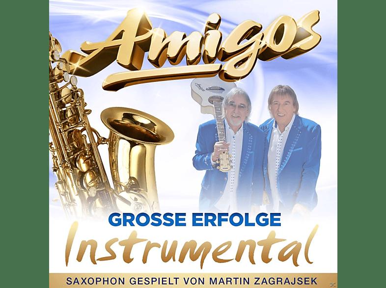Martin Zagrajsek, Die Amigos - Große Erfolge-Instrumental [CD]