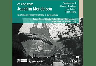 Polish National Radio Symphony Orchestra, VARIOUS - Joachim Mendelson: En Hommage  - (CD)