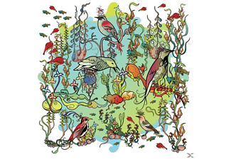 John Zorn - O'o  - (CD)