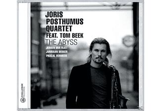 POSTHUMUS,JORIS QUARTET & BEEK,TOM, Joris Posthumus - The Abyss  - (CD)