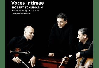 Voces Intimae - Piano Trios op.38 & 110  - (CD)