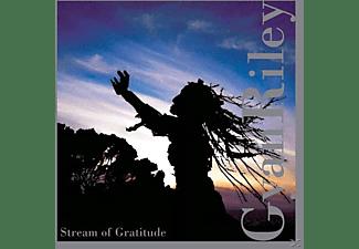 Gyan Riley - Stream Of Gratitude  - (CD)