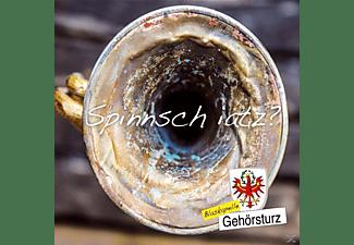 Blaskapelle Gehörsturz - Spinnsch iatz?  - (CD)