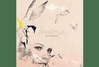 Brun Ane - Live In Scandinavia [CD]