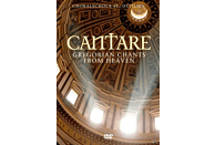 CHORALSCHOLA ST.OTTILIEN - Cantare-Gregorian Chants From Heaven [DVD]