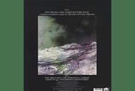 The Wild Wild - Into The Sea, Into The Stars [Vinyl]