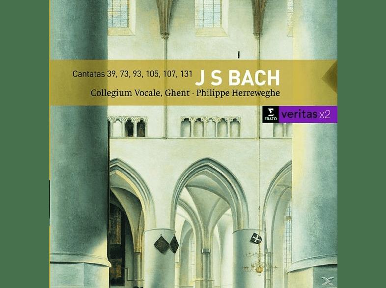 Philippe Herreweghe - Kantaten Bwv 39/73/93/105/+ [CD]