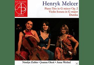 Zubko,Natalya/Okon,Joanna/Wrobel,Anna - Kammermusik mit Violine  - (CD)
