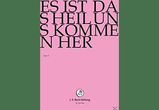 Rudolf Lutz / J.S. Bach-Stiftung - Es Ist Das Heil Uns Kommen Her  - (DVD)