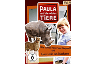 Paula und die wilden Tiere - Vol. 4 [DVD]