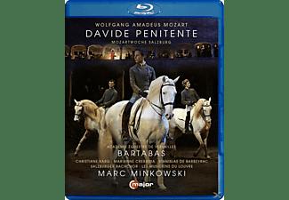 Karg/Minkowski - Davide Penitente  - (Blu-ray)