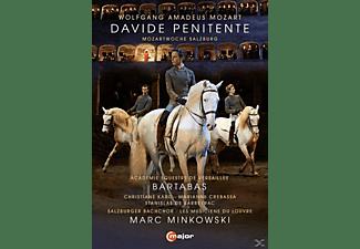 Christiane Karg, Marianne Crebassa, Stanislas De Barbeyrac, Musiciens Du Louvre, Salzburger Bachchor - Davide Penitente  - (DVD)