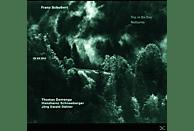 Schneeberger, Demenga, Dähler - Trios Es-Dur D 929 & D 897 [CD]