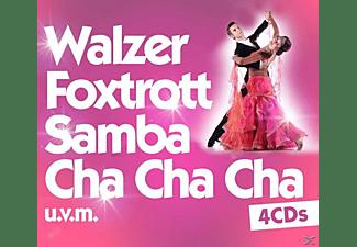 VARIOUS - Walzer, Foxtrott, Samba, Cha Cha Cha Uvm.  - (CD)