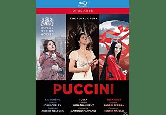 Teodor Illincai, Hibla Gerzmava - La Boheme/Tosca/Turandot  - (Blu-ray)