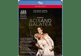 Hogwood/De Niese/Workman - Acis Und Galatea  - (Blu-ray)