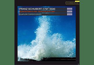 Quatuor Terpsycordes, VARIOUS - Quartettsatz D 703  - (CD)