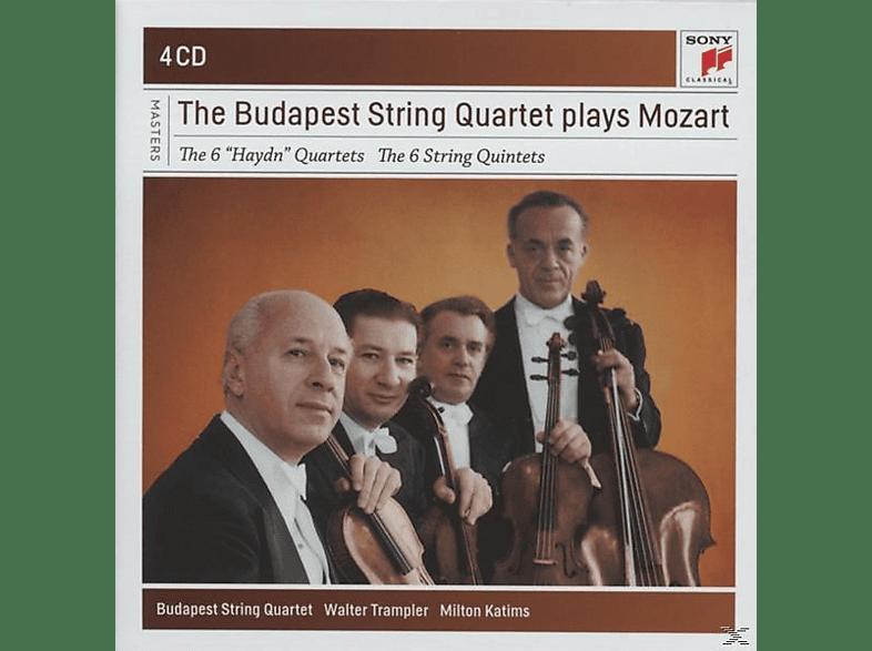 Wolfgang Amadeus Mozart - The 6 Haydn Quartets & The 6 Streichquartette [CD]
