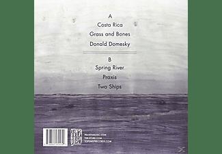 Prawn - Ships  - (Vinyl)