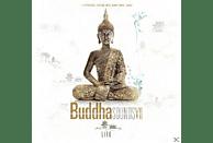 VARIOUS - Buddha Sounds 7 [CD]