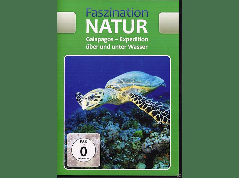 Faszination Natur: Galapagos - Expedition über und unter Wasser [DVD]
