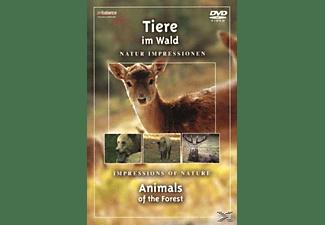 Tiere im Wald DVD